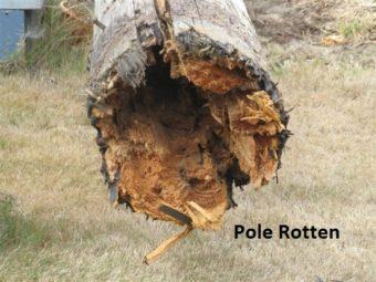 Pole Rotten