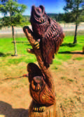 Photo of avian themed chainsaw art