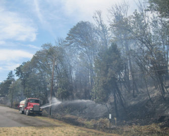 Truck spraying water on trees.