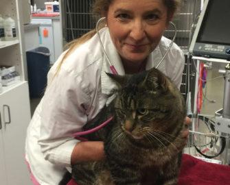 Ingrid Kessler at her vet office holding a cat.