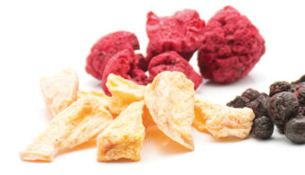 Freeze dried berries and apples